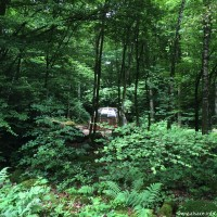 Des hébergements insolite au milieu des bois. Point de vue idéal pour regarder les étoiles