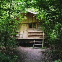 Cabane de la chouette